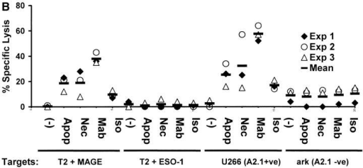 Generation of tumor-specific killer T cells. (A) Generation of killer T cells using peptide-pulsed or tumor cell–loaded DCs. T cells from experiment in Fig. 3 A were tested for killing of T2 cells pulsed with 10 μM HLA A*0201-restricted MAGE3/ NY-Eso-1 peptide or HLA A*0201-positive (U266) or -negative (ark) myeloma cells, at a E/T ratio of 20:1, with a 5 h 51Cr release assay. Lysis of K562 cells (as control) was <10% (data not shown). (B) Summary of experiments on three donors using DCs loaded with dying (apoptotic/necrotic) or antibody-treated (anti–syndecan-1 mAb/isotype) myeloma cells (arp cells: MAGE-3 +ve, NY-Eso-1 –ve).