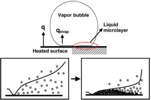 Mechanism of nanoparticle deposition during the boiling process (micro-layer evaporation) [15].