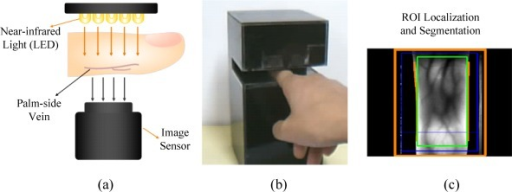 Finger-vein image acquisition system. (a) NIR light transillumination. (b) A homemade finger-vein imaging device. (c) ROI extraction proposed in [4].