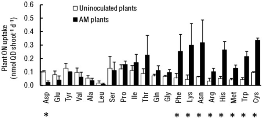 Amino acid uptake by AM and uninoculated plants.Abbreviations for amino acids are standard. Bars are means +1 SE. Asterisks indicate significant pairwise differences between uninoculated and AM-colonized plants (P<0.05).