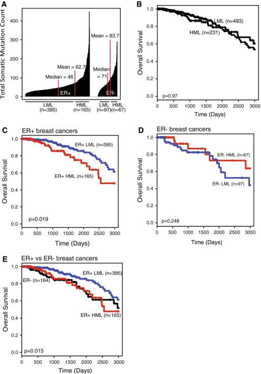 HML subset of ER+ breast tumors is associated with poor clinical outcome. a Index plot. Median and mean SMLs of each population are indicated with red lines. b–e Kaplan–Meier survival curves of all breast tumors (b) and the HML (red) and LML (blue) subsets of: c ER+ breast cancer; d ER− breast cancer; and e a comparison between ER+ HML, ER+ LML, and ER− (black) breast cancer. The log-rank test was used to determine p-values