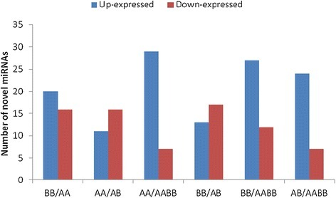 The expression levels of the novel miRNAs in the parents and their allodiploid and allotetraploid.
