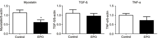 Myostatin, transforming growth factor beta (TGF-β), and tumor necrosisfactor alpha (TNF-α) gene expression in the left quadriceps of treated (EPO)and control mdx mice. *P<0.05, GBStat test.