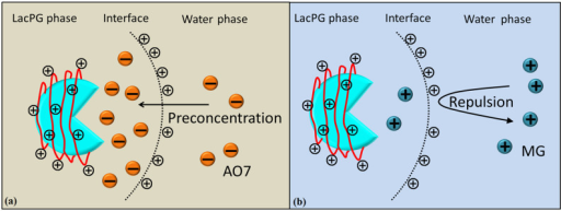 Potential role of PEI coatings on LacPG decolourisation of (a) AO7 and (b) MG.
