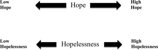 Hope and Hopelessness as Two Separate Constructs.