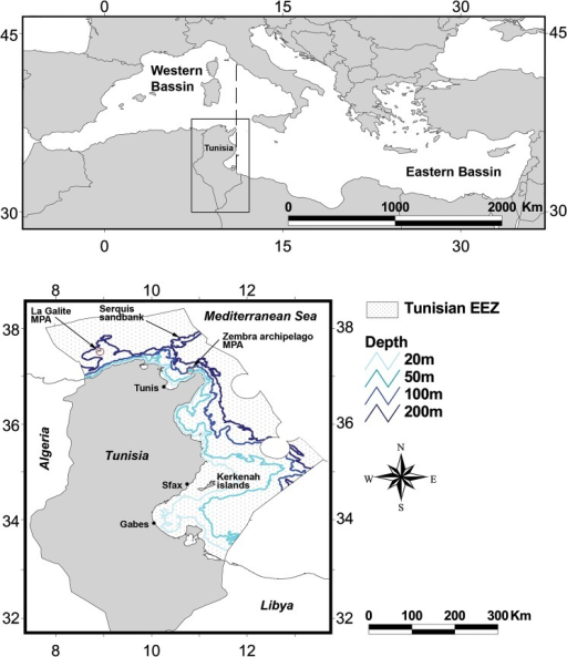 Geographical location of the study area and main geographical features of the Tunisian exclusive economic zone (EEZ).The axes indicate degrees latitude and longitude.