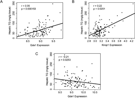 Correlation of candidate gene expression with hepatic TG content.(A–B) Correlation of hepatic TG with expression levels of Gde1 (A) and Knop1 (B) in the liver. (C) Correlation of hepatic TG with expression levels of Gde1 in the white adipose tissue. r, biweight midcorrelation; p, p-value.DOI:http://dx.doi.org/10.7554/eLife.05607.017