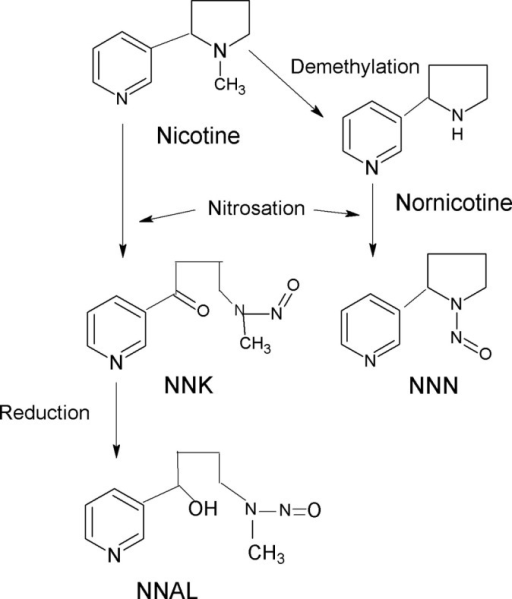 Formation of NNK, NNN, and NNAL.
