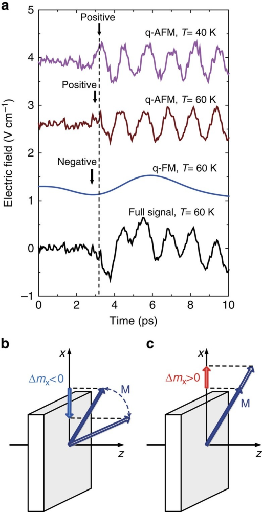Determination of the absolute sign of the change of D/J in TmFeO3.(a) The signal emitted just below the spin reorientation temperature at 60 K (black) is shown together with its low-frequency (blue) and high-frequency part (brown). The latter part is in phase with the signal measured at 40 K which describes a quasi-antiferromagnetic (q-AFM) mode only (magenta). The low-frequency part corresponds to the quasi-ferromagnetic mode (q-FM). The first half-cycle of the quasi-antiferromagnetic mode has a different sign compared with the first half-cycle of the quasi-ferromagnetic mode (see dashed line). (b) During the spin reorientation the spin configuration of TmFeO3 continuously rotates in the (xz) plane, while keeping the weak ferromagnetic moment in the same plane. At low temperatures, the magnetization is oriented along the x axis. So, due to the laser-induced reorientation at 60 K, the x-component of the magnetization initially decreases. (c) Since the first half-cycle of the quasi-antiferromagnetic mode has a different sign, due to the exchange-driven torque the magnetization initially moves so as to have a positive x-component which implies an increase of D/J.
