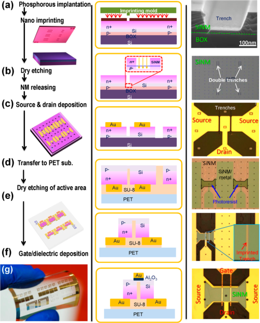 Fabrication process for nano trench Si NM flexible RF TFTs by NIL.Schematic illustration (left column), cross section structure (middle column), and corresponding microscopic images (right column) of nano trench Si NM flexible RF TFTs. (a) Defining a nano trench on a phosphorus implanted p− SOI substrate using NIL. (b) Dry etching to separate the n+ area in order to form a path of n+/p−/n+ from source to drain. (c) A partially completed TFT after undercutting the buried oxide to release the Si NM, which forms the active region, and forming the source and drain contacts. (d) Flip transfer of the Si NM with the source and drain electrodes onto an adhesive coated PET substrate. (e) Dry etching to define the perimeter of the active region. (f) Deposition of an Al2O3 gate dielectric layers and gold gate electrodes above the trench. (g) Optical image of arrays of the bent TFTs on a PET substrate.