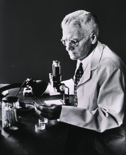<p>Half-length, seated at microscope.</p>