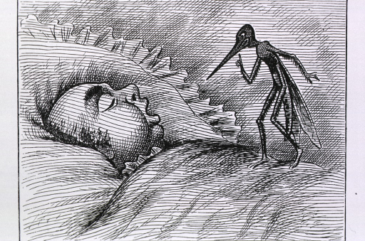 <p>&quot;Let me have men about me...&quot; [cartoon showing a mosquito sitting on a sleeping man].</p>