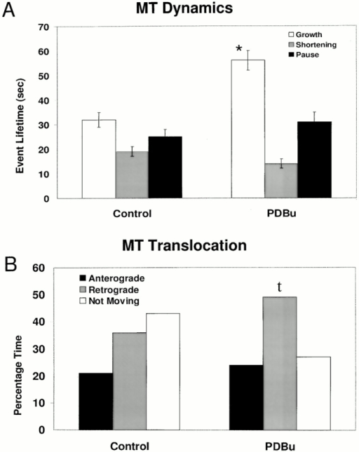 Quantification of MT assembly versus translocation dynamics. Data compiled from four control and four PDBu-treated growth cones. DIC and fluorescence images were collected at 10-s intervals for 240 s. A total of 41 control and 37 PDBu MTs were analyzed. (A) PDBu treatment significantly increases the length of time MTs spend in growth phase, *P < 0.00004, paired student's t test. (B) Percentage of time MTs undergo retrograde or anterograde translocation and time not moving under control conditions and after PDBu. The actual time MTs undergo retrograde translocation increases significantly (P < 0.01, paired Student's t test) in control (27 ± 3 s) versus PDBu treatment (50 ± 6 s).