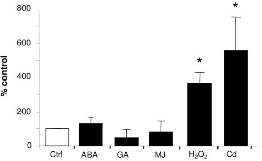 Modulation of AtMRP6 gene expression level determined by quantitative real-time PCR in response to different stress conditions. Variation of AtMRP6 gene expression in seedlings treated with different hormones (100 μM, 12-hr), after an oxidative stress (10 mM H2O2, 12-hr) or in roots of 3–4 week-old plants after Cd exposure (5 μM, 30-hr). (ABA: abscissic acid, GA: gibberillic acid, MJ: methyl jasmonate). Values from three independent experiments are expressed as percentage of control (untreated plants). (* : P < 0.05, t-test).