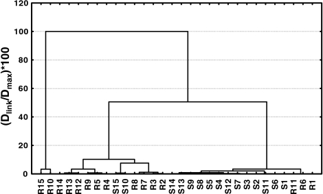 Dendrogram showing clustering of root and shoot tissue samples of the chromium exposed plants of P. stratiotes