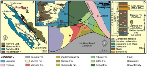 Fossil locality and geological setting.A, Map of Spain showing the location of the Iberian Chains (IC). B, Map showing the Purujosa locality in the northern part of the Iberian Chains. C, Geological map of Purujosa with indication of the studied section (marked with a star). D, Composite stratigraphic section indicating the level from where Ctenoimbricata spinosa was collected.