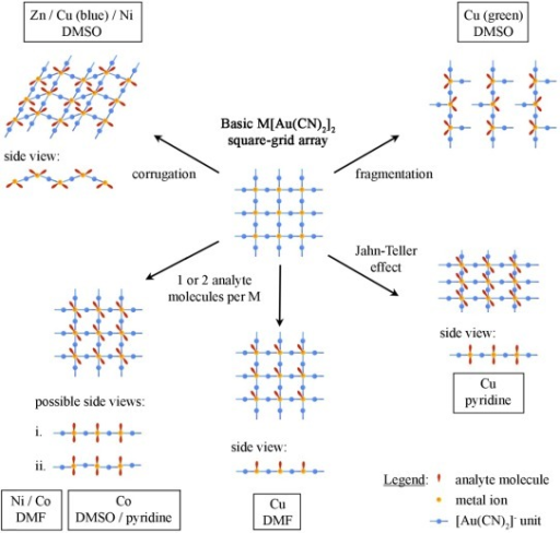 Different structural models observed for the M[Au(CN)2]2(analyte)x polymers, all resulting from the structural flexibility of the basic M[Au(CN)2]2 square-grid array.