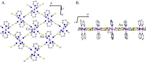 Structural model proposed for Co[Au(CN)2]2(pyridine)2: (A) 2-D square-grid array with pyridine molecules on both sides of the grid; (B) Side-view of a 2-D layer, showing the position of the [Au(CN)2]− units with respect to the Co(II) centres.