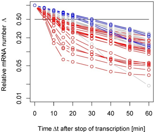 Experimental mRNA decay patterns.The relative mRNA number  defined in Eq. (1) can be measured at different time points after the interruption of transcription for S. cerevisiae as adapted from [23]. In this semi-log plot we show only those decay patterns that are monotonically decreasing and satisfy the convexity properties according to the general condition derived in Eq. (18). From the 51 decay patterns shown here, 21 curves show a cross-over from fast to slow decay (red) while 4 curves show a cross-over from slow to fast decay (blue). This indicates that the purely exponential decay is only one of several possible decay patterns.