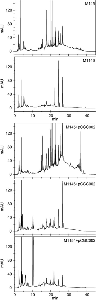 Comparative metabolic profiling. HPLC chromatograms of supernatants of M145 and the quadruply deleted mutant M1146, and of the same strains containing the congocidine gene cluster (indicated as '+pCGC002') after growth in liquid GYM medium. Note the simplified chromatogram of M1146 compared with M145, and the higher levels of congocidine production in the mutant strains, especially M1154. Fractions that eluted at around 10 min were collected from the M1154 + pCGC002 sample and analysed by MS‐MS to verify the production of congocidine (Fig. S3).
