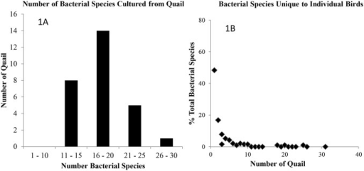 The number of bacterial species and the species diversity of northern bobwhite cultivable bacterial microbiota.1A. Species data from 28 individual quail for which all four tissue types are presented. Cultures of most quail yielded 16 to 20 bacterial species while the cultures of a moribund quail gave rise to 26 bacterial species. 1B. Data presented are percentage of unique bacterial species (total number = 190) found in individual quail. Vast majority of bacterial species were unique to individual quail.