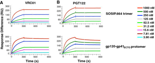 Comparisons of VRC01 and PGT122 binding to the Env SOSIP.664 trimer and gp120-gp41ECTO protomer. The sensorgrams show VRC01 (A) and PGT122 (B) IgG binding to BG505 SOSIP.664 trimers (top) and gp120-gp41ECTO protomers (bottom). The colored curves show the response at various analyte concentrations as indicated to the right. Note that the color code is the same for all diagrams but that the titration ranges start and end at different concentrations and also differ in the dilution steps. The modeled curves in black (bivalent model) become visible only when they diverge from the empirical data. The sensorgrams show one of two of replicates. In some experiments the dissociation phase had to be extended to 20 min to achieve significant values (T > 10) for kd1 (not shown).