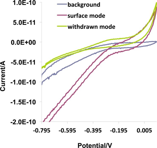 Cyclic voltammograms collected at everymode of bacterium selection.Background: before engaging the surface. Surface mode: engaging witha single bacterium. Withdrawn mode: withdrawing upon attachment ofa bacterium. Scan rates were 0.05 V s–1; referenceelectrode: Ag/AgCl wire.
