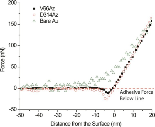 AFM retraction curves are shown for ADHII mutantsV66Az and D314Azduring cantilever attachment to a single bacterium. Adhesion forcesare visible for both mutants. Bare gold substrates are shown as acontrol.