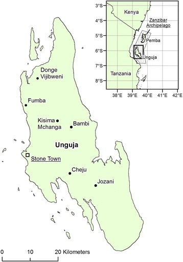 The location of Unguja, Zanzibar. Place names include Stone Town, the principal town of the Zanzibar archipelago, and others mentioned in the main text. Source: DIVA-GIS (www.diva-gis.org).
