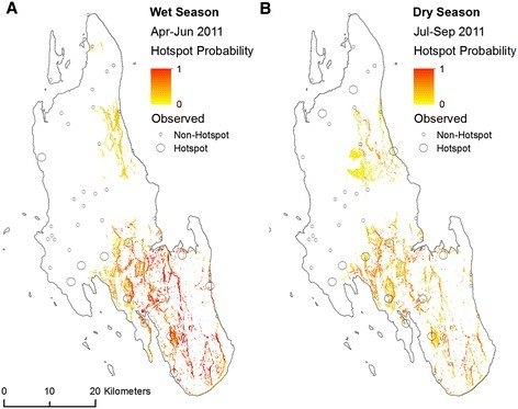 Observed hotspots of malaria infection and probability of malaria infection hotspots predicted from a BRT model using variables summarising the physical geography of Unguja, Zanzibar for (A) the wet season and (B) the dry season. White areas are where probability of malaria infection hotspot was predicted to be −1 to 0.