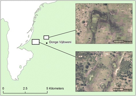 Malaria transmission hotspot located at Donge Vijibweni (see Figure2for location within Unguja). Sub-panels show 50 cm aerial imagery of water bodies located within doline landforms close to the health facility.