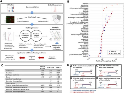 A Combined experimental and computational pipeline to study human metabolism. Experimental work and omics data analysis steps precede computational modeling. Model predictions are validated based on targeted experimental data. Metabolomic and transcriptomic data are used for model refinement and submodel extraction. Functional analysis methods are used to characterize the metabolism of the cell-line models and compare it to additional experimental data. The validated models are subsequently used for the prediction of drug targets. B Uptake and secretion pattern of model metabolites. All metabolite uptakes and secretions that were mapped during model generation are shown. Metabolite uptakes are depicted on the left, and secreted metabolites are shown on the right. A number of metabolite exchanges mapped to the model were unique to one cell line. Differences between cell lines were used to set quantitative constraints for the sampling analysis. C Statistics about the cell line-specific network generation. D Quantitative constraints. For the sampling analysis, an additional set of constraints was imposed on the cell line specific models, emphasizing the differences in metabolite uptake and secretion between cell lines. Higher uptake of a metabolite was allowed in the model of the cell line that consumed more of the metabolite in vitro, whereas the supply was restricted for the model with lower in vitro uptake. This was done by establishing the same ratio between the models bounds as detected in vitro. X denotes the factor (slope ratio) that distinguishes the bounds, and which was individual for each metabolite. (a) The uptake of a metabolite could be x times higher in CCRF-CEM cells, (b) the metabolite uptake could be x times higher in Molt-4, (c) metabolite secretion could be x times higher in CCRF-CEM, or (d) metabolite secretion could be x times higher in Molt-4 cells. LOD limit of detection. The consequence of the adjustment was, in case of uptake, that one model was constrained to a lower metabolite uptake (A, B), and the difference depended on the ratio detected in vitro. In case of secretion, one model had to secrete more of the metabolite, and again the difference depended on the experimental difference detected between the cell lines