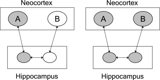 Network structure in episode binding. Two arbitrary items (object, events) A and B, represented in the neocortex, are bound in an episode via connections and rapid long-term potentiation in the hippocampus and surrounding medial temporal lobe (after Norman and O'Reilly 2003). Ovals represent neurons (or populations of neurons). Gray ovals are active. When A is activated in the neocortex, it will activate B through the (temporal) connection structure between them in the hippocampus (and medial temporal lobe)