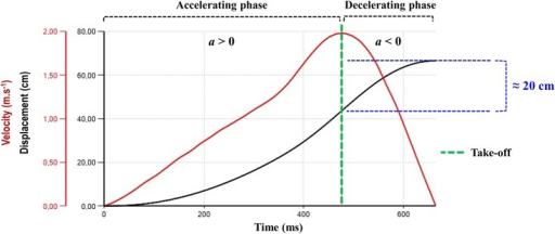 "Accelerating and decelerating phases during an actual jump squat attempt.The measurement was performed at the optimum power zone. From the take-off (when the velocity begins to decrease) to the final point of the upward movement (at ""zero-velocity"") the athlete vertically jumps ≈ 20 cm."