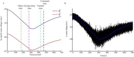 Computational processing of simulated EEG.(A) Model predictions for the stationary states for he (blue line) and hi (red line). The superscript 0 in the legend represents stationary states. (B) The fluctuations of real-time he. The blue line in between is the stationary values for he. sEEG is calculated by using real-time he minus the values of he at stationary states. The fluctuations are displayed at 100*actual-size, and the line in between is the stationary state for excitatory neurons. The event time points are marked by dashed lines.