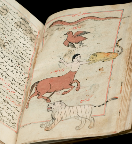 <p>Image of an open book, Al-Qazwini's Aja'ib al-makhluqat wa ghara'ib al-mawjudat, a Persian translation copied in 19th centuary India; the full page, fol. 24 b, shows a centaur hunting holding a sword, with tigers and a bird surrounding him; a partial page has Persian script.</p>