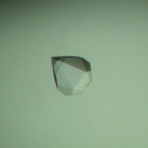 A crystal of ISH224 α2,6-STase obtained using the hanging-drop vapour-diffusion method. The approximate dimensions of the crystal are 0.3 × 0.3 × 0.3 mm.
