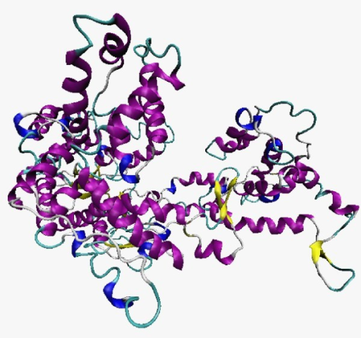 The 3D structure of the RNA polymerase from the M. perniciosa mitochondrial plasmid. Magenta: helices; yellow: strands; blue: turn.