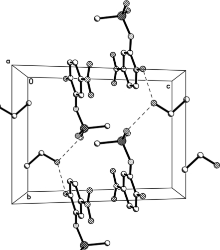 Packing diagram of the title compound with hydrogen bonds.