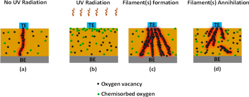 The generation and annihilation of conducting filaments under various conditions.(a) The formation of a single filament, in the absence of UV exposure, under an applied positive potential. (b) UV exposure causes an increase in the OB concentration on or near the GDC film surface. (c) The formation of multiple conducting filaments under the combination of UV irradiation and a positive potential, increasing the current level of the low-resistance state (d) The annihilation/rupture of conducting filaments as a consequence of an applied negative potential.