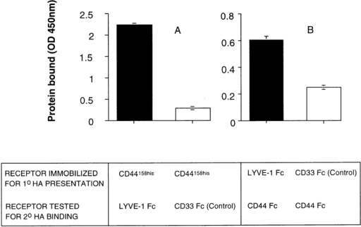 LYVE-1 molecules support HA-mediated binding to  CD44. The capacity of LYVE-1 and CD44 to form ternary complexes with HA was tested using a modification of the HA-binding assay in Fig. 4 B. A shows binding of LYVE-1 Fc and CD33  Fc (control) to HA, presented by immobilized CD44158his protein.  B shows binding of CD44 Fc to HA, presented by immobilized  LYVE-1 Fc or CD33 Fc (control). Bound fusion proteins were  detected with peroxidase-conjugated anti–human IgFc antibody,  or with peroxidase-conjugated CD44 mAb A3D8, respectively,  as described in Materials and Methods. No binding was observed  in the absence of HA (not shown). Data are the mean ± SEM  (n = 3).