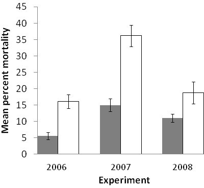 Effect of the combination of Mac-2 and Mac-5 QTL on mean percent plant mortality (± standard error) based on genotypic classes carrying both favorable alleles (++, grey bars) and  genotypes (--, white bars) for field experiments in 2006, 2007, and 2008.