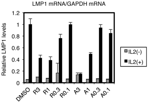 Suppression of LMP1 expression in EBV-positive NK cells by HSP90 inhibitors is likely dependent on IL-2.SNK6 cells, routinely cultured with IL-2, were washed extensively with PBS, and then cultured in the presence (black bars) or absence (gray bars) of IL-2 with Radicicol (R) or 17-AAG (A) at concentrations of 3, 1, 0.3 or 0.1 µM. After 72 h, cell RNAs were collected and subjected to Real-Time RT-PCR. Relative levels of LMP1 mRNA are shown after normalization to GAPDH mRNA levels. Each bar represents the mean and SD of three independent transfections.