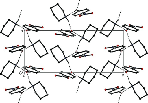 The crystal packing of the title salt, viewed along the b axis. Hydrogen bonds are shown as dashed lines (see Table 1 ▶ for details; H atoms not involved in hydrogen bonding have been omitted for clarity).