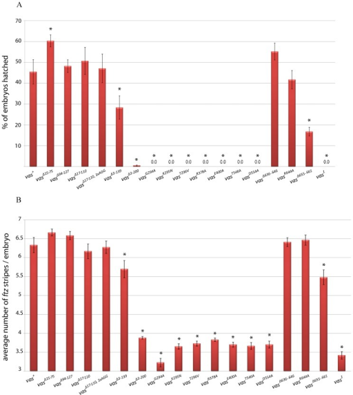 The ability of various egfp-vas constructs to restore abdominal segmentation in vas1 embryos.(A) Hatching rates: the red bars indicate the percentage of embryos hatched after 48 hours, error bars indicate SEM from at least five plates. Between 500-1000 embryos in total were scored for each genotype. (B) ftz expression in vas1 embryos containing various egfp-vas constructs: The y-axis indicates the average number of ftz stripes for each genotype. Error bars show SEM calculated from more than 50 embryos examined for each genotype. In both A and B asterisks show a significant increase or decrease from vas+ (p<0.05).