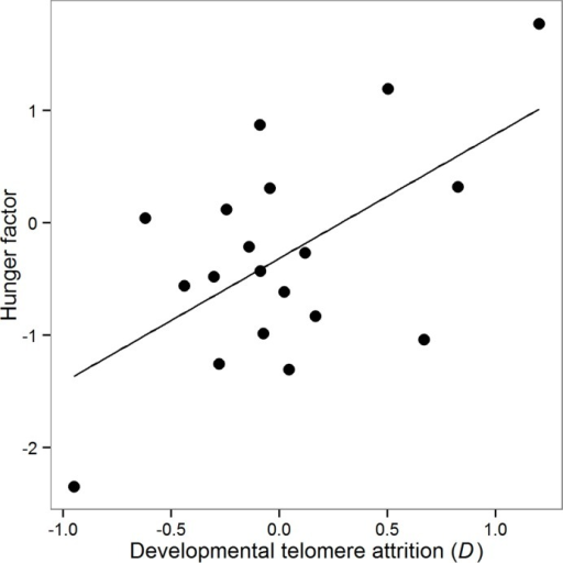 Effects of developmental telomere attrition on the 'hunger factor'.Data points are the scores extracted by the PCA (see text for details) for each of the birds for which we also had telomere attrition data (n = 19). Negative values of the hunger factor indicate birds with a 'hungrier' cognitive phenotype, whereas positive values indicate a more sated cognitive phenotype. The solid line shows the predicted regression line derived from a simple regression.