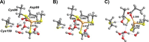 H3O+-assisted removal of Hg(SCH3)2 from the MerB active site (compact conformation).(A) Cys96-bound Int3′ surrounded by water-solvated H3O+; (B) proton transfer from H3O+ to Cys96 (transition state); (C) Asp-bound Hg(SCH3)2 (Int4). Relevant distances (in Ångstrom) are highlighted.