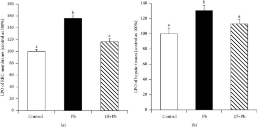 Effects of oral administration of G. lucidum on the levels of lipid peroxide (LPO) of RBC membranes and hepatic tissues. Results are mean ± SE (n = 6), each with duplicate determinations. Bars with different alphabets are significantly different at P < 0.05. Data were analyzed with one-way ANOVA, with Fisher's PLSD for post hoc comparison.