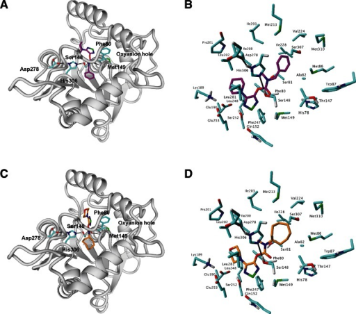 The docking poses of 1 (a, b) and 6 (c, d) in the binding pocket of ABHD6 selected for molecular alignment. a, c Overview of the complex; b, d details of the binding pocket
