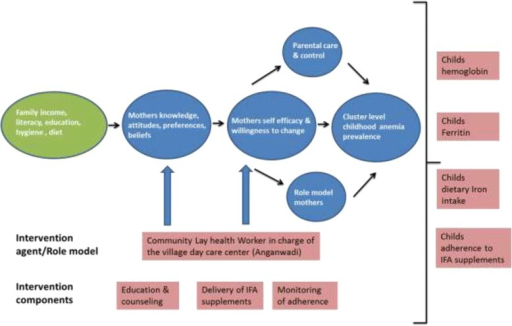 Hypothesized causal pathway of the effect of the intervention and its outcome measures
